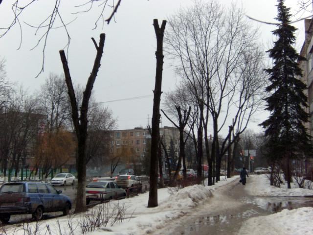 """Застолбили"" улицу"