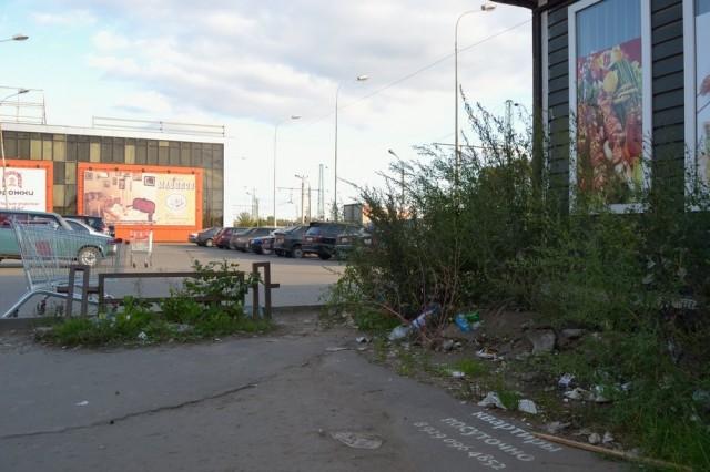 Мусор на улицах - бич Твери