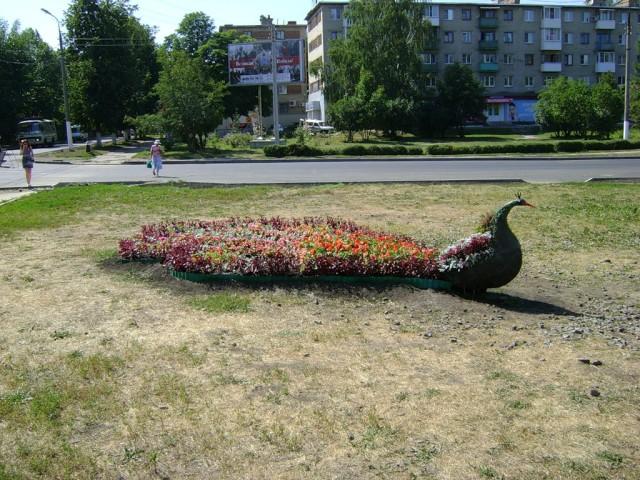 Одна из новомосковских клумб