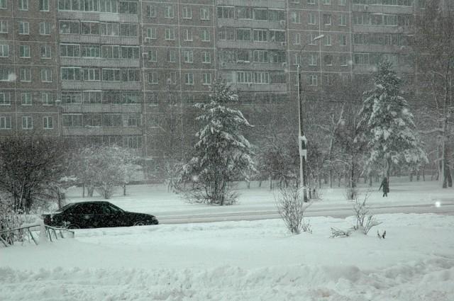 Первый снегопад в ноябре 2012 года