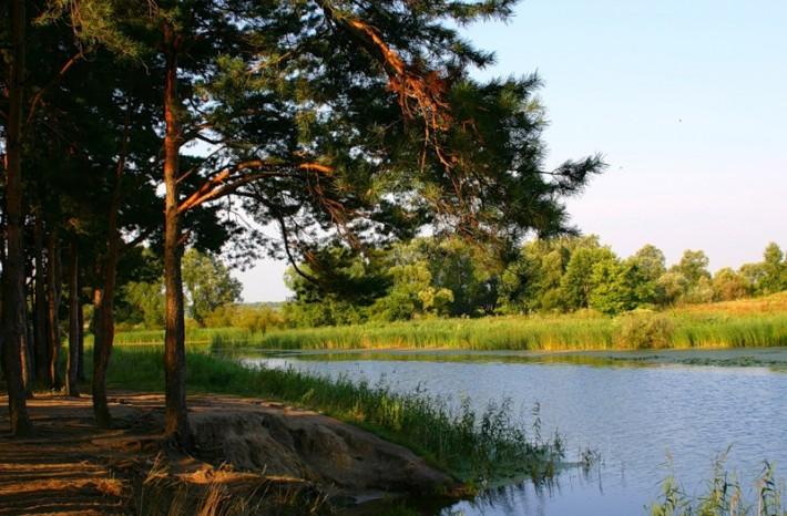 Река Цна, Тамбов