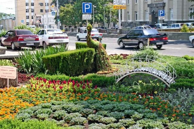 Ставрополь. Живая клумба