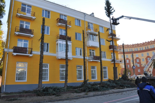 Вырубка зеленных насаждений в Смоленске