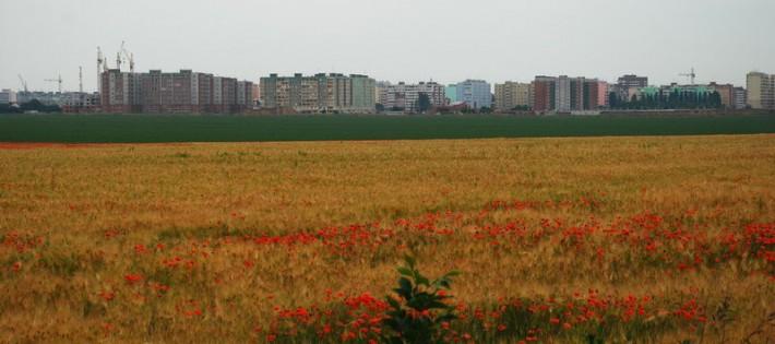 Таганрог. Русское поле