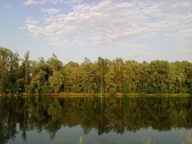 Река Черемшан – гордость димитровградцев