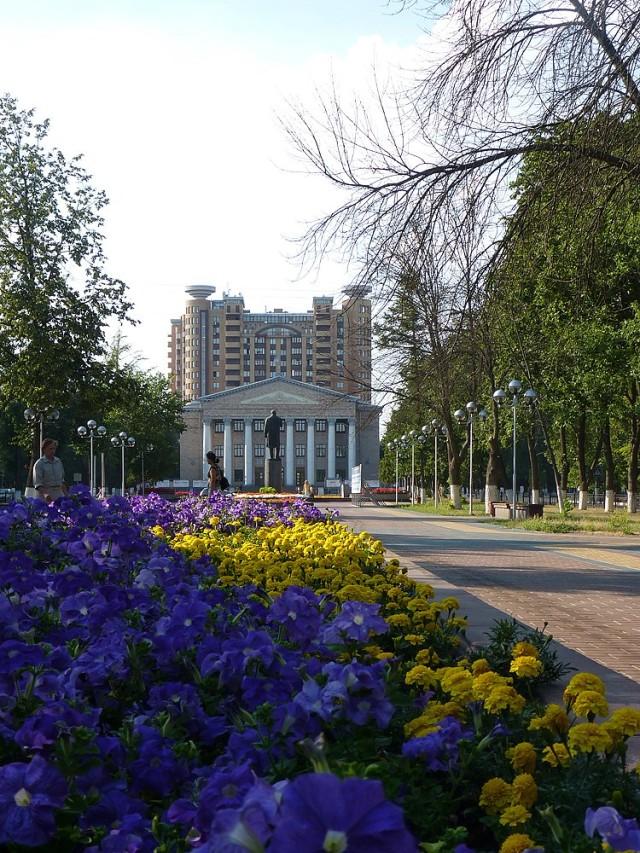 Улица Маяковского в Жуковском