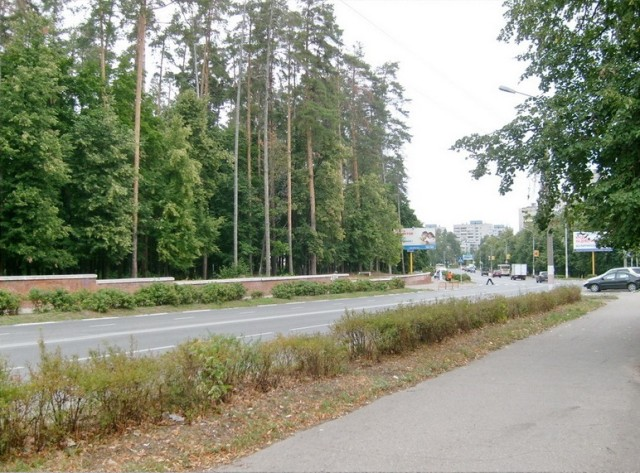 Это не брянский лес, а соцгород в Димитровграде