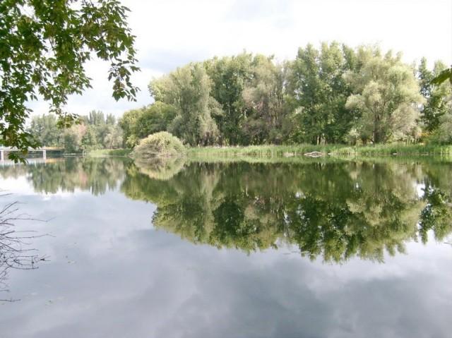 Знаменитый Марков пруд – любимое место отдыха жителей района Химмаш