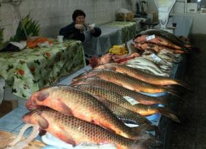 Татар-базар