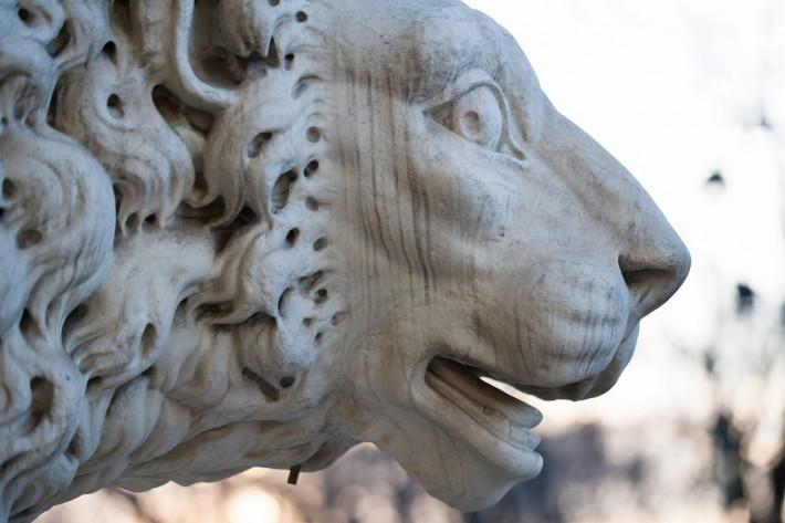 Лев на Адмиралтейской набережной – один из символов Санкт-Петербурга