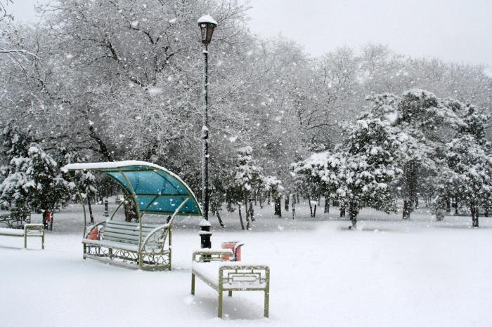 Темрюк. Снег