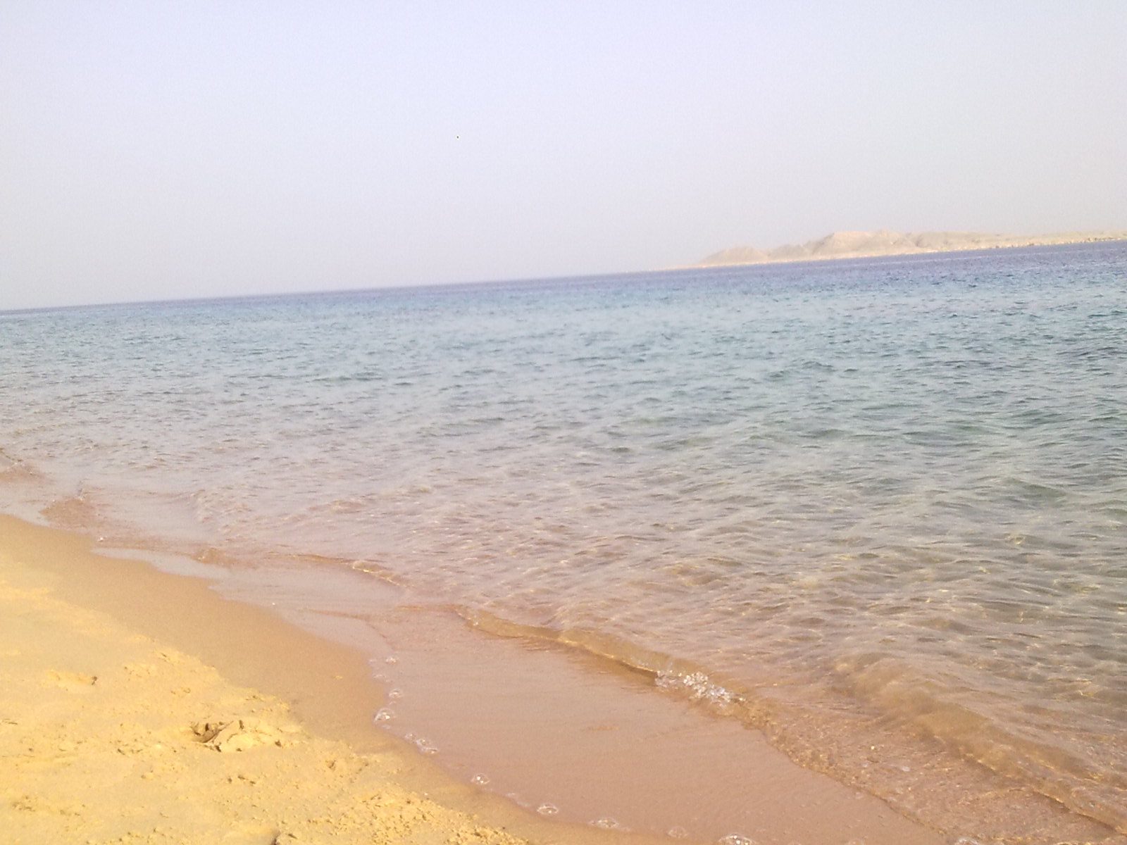 Красное море. Египет