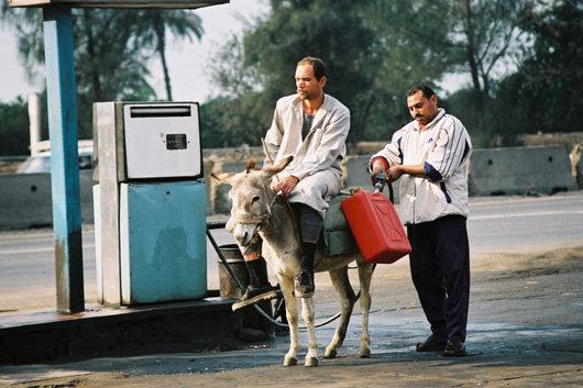 Заправляют в Египте не только машины
