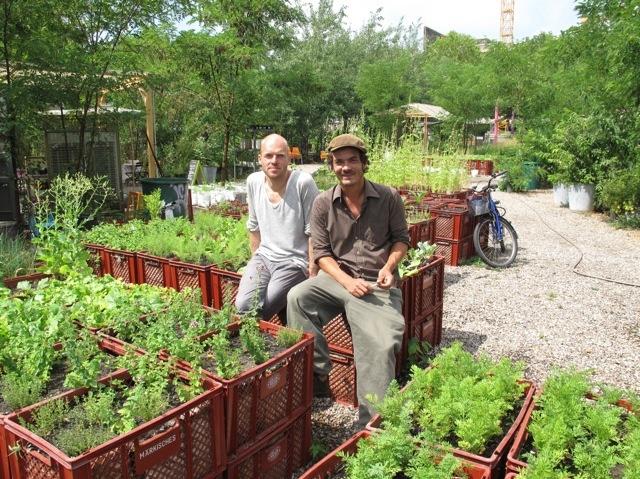Немецкое огородничество