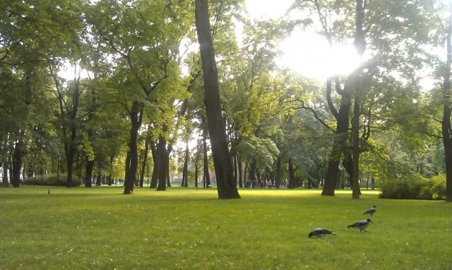 Парк рядом с домом