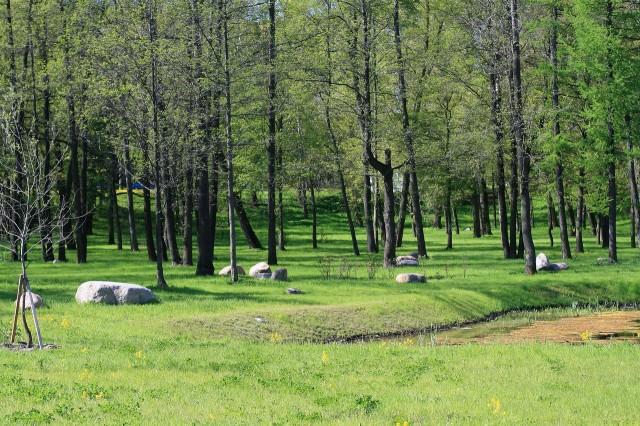 Парк Новознаменский