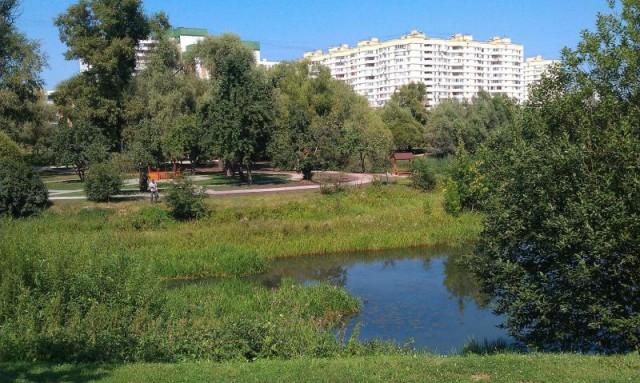 Пойма реки Городни в Зябликово