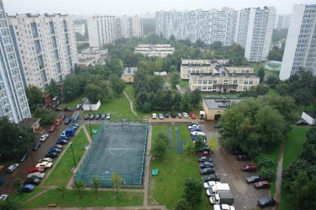 Озеленение дворов – приоритетная задача Дмитровского района