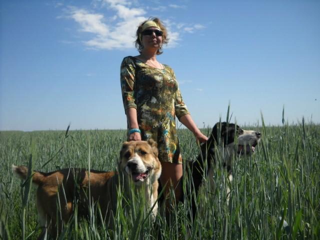 На полях Оренбургской области