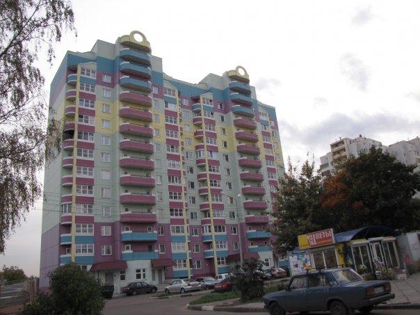 Дом-винегрет (мкр. Дзержинского)