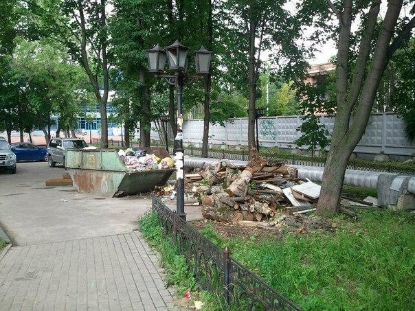 Состояние городского парка