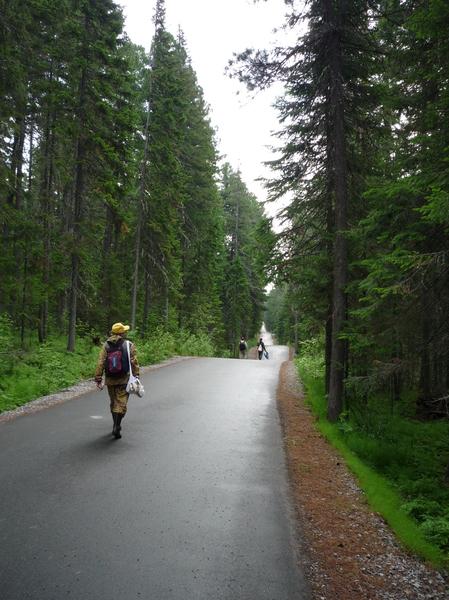 На трассе биатлонного центра летом