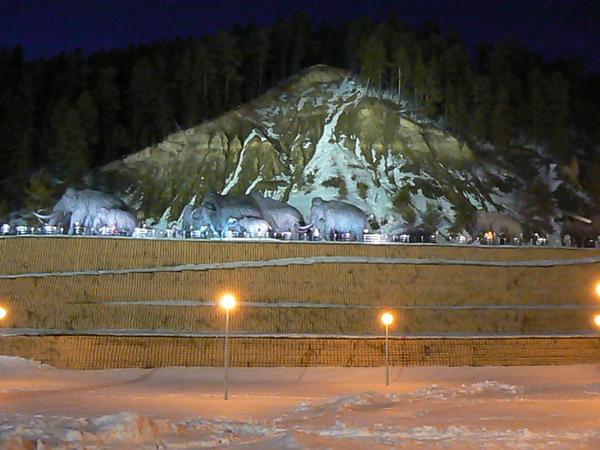 В лучах подсветки оживают мамонты Археопарка, с некоторого времени ставшие символом Ханты-Мансийска