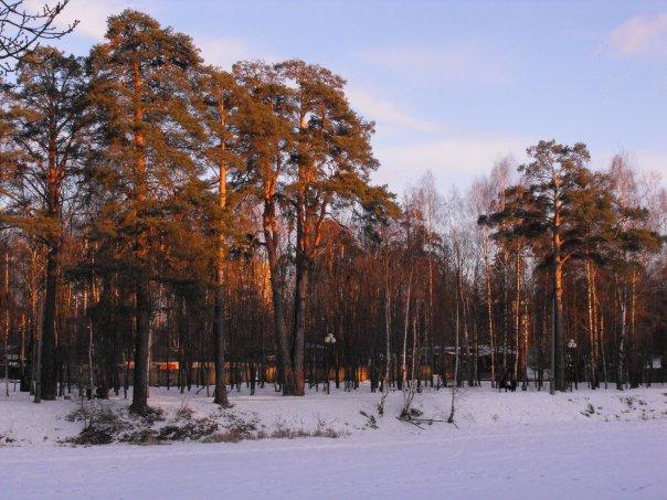 Зима на Ивановских прудах