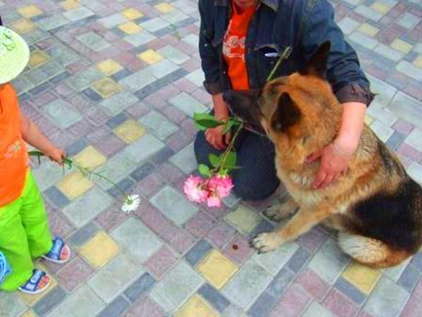 Как можно бояться собаки, которая носит цветы в зубах?