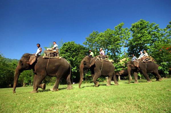 Экскурсоводом в Таиланде может работать человек без специального образования