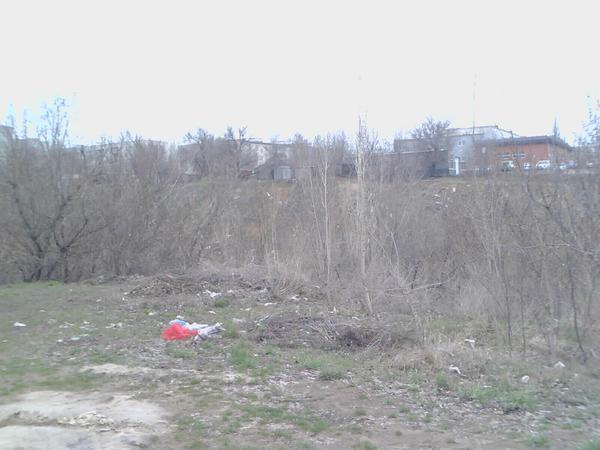 Вид с Университетского проспекта. Советский район