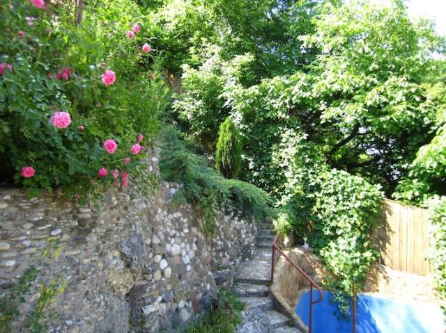 Мой вертикальный сад