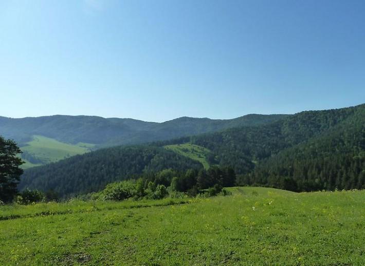 Солнечная долина Алтайского края