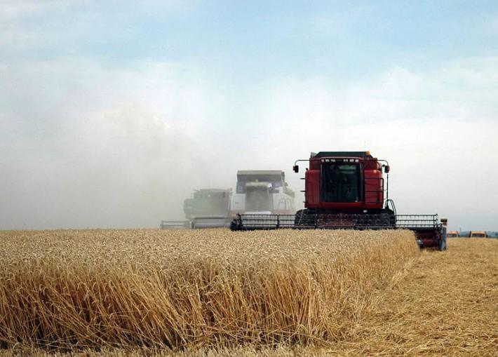 «Битва за урожай» в Ставропольском крае