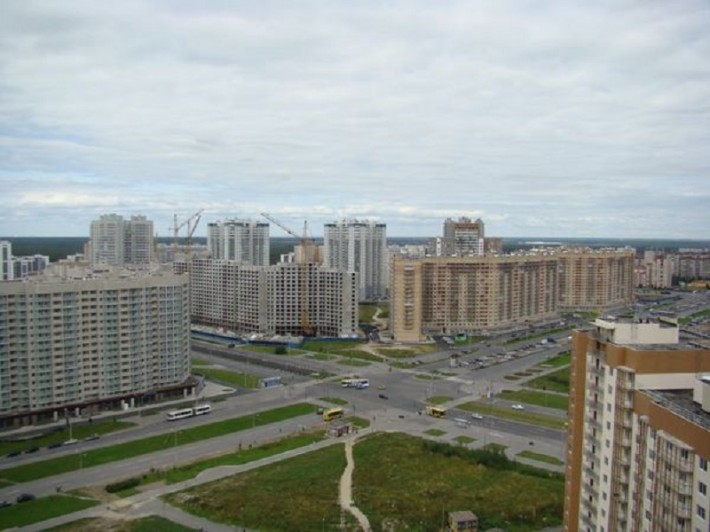 Новостройки Приморского района — выбор молодых семей