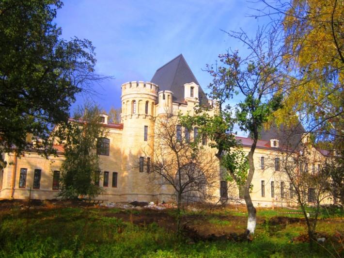 Борковский замок — старинная усадьба в селе Борки