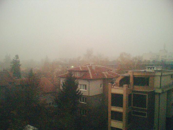 Туман в конце ноября. И это еще немного рассеялось!