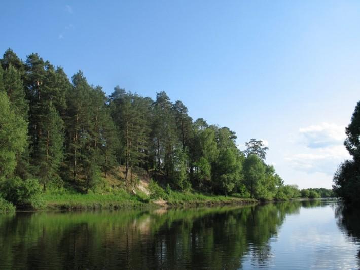 Река Десна близ г. Жуковка