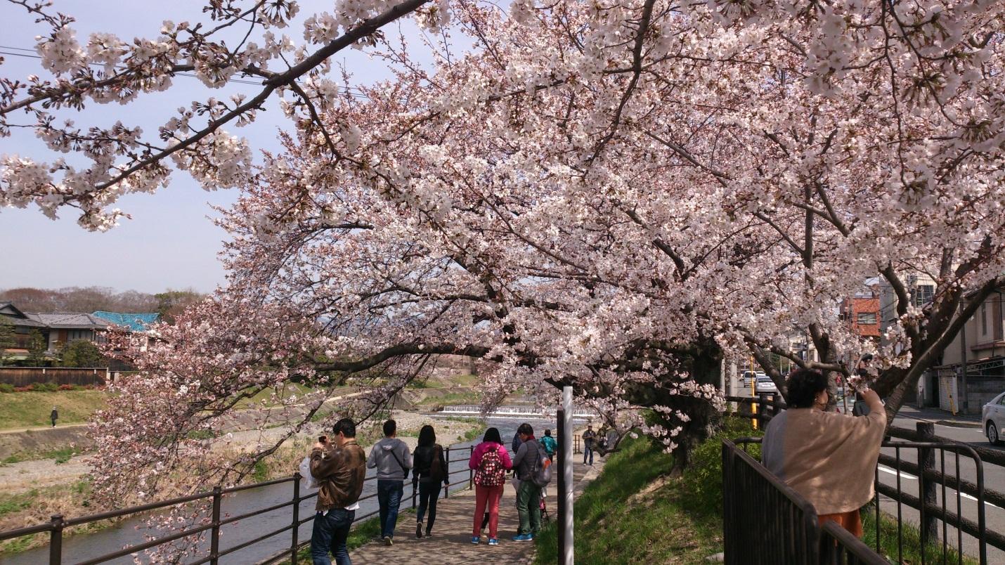 Информация для тех, кто хочет уехать жить в Японию