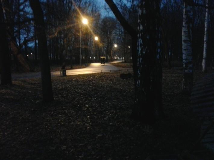 Осень, Елагин остров, г. Санкт-Петербург