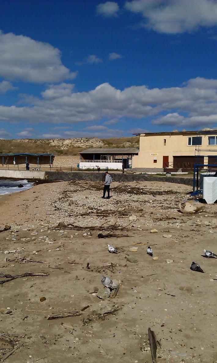 """Пляж """"Солнечный"""" возле сквера им. А.Ахматовой. Не пугайтесь, такой он не всегда, такой пляж стал после шторма 25 сентября"""