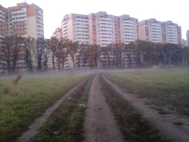 По утрам бывают туманы