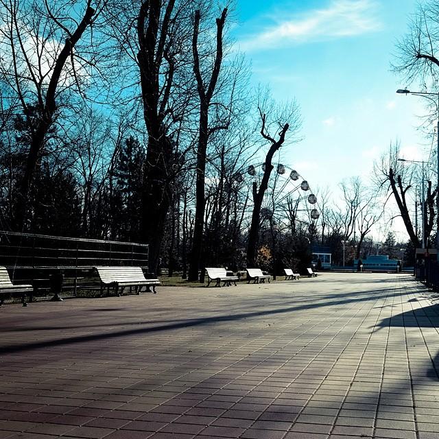 Городской парк, Майкоп