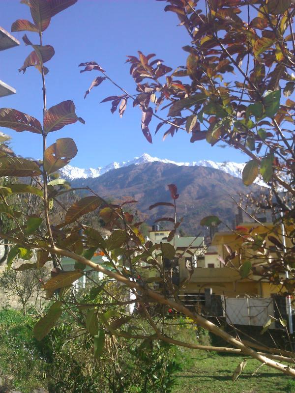 С наступлением зимы на вершинах гор выпадает снег, и в Дарамсале становится резко холодно ночами, т.к. холодный воздух спускается вниз
