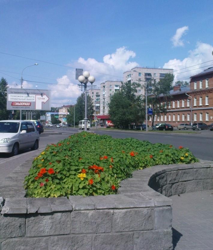 """Недалеко от въезда в город - остановка """"Лагерный сад"""""""