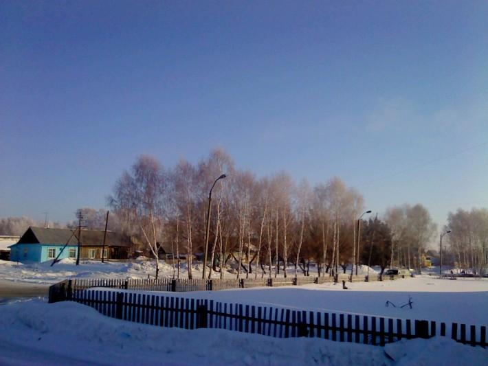 Косиха зимой