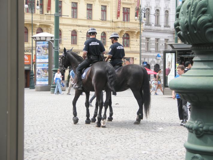 Наряд полиции на защите порядка