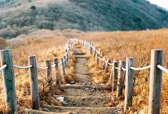 В корейских горах везде лесенки