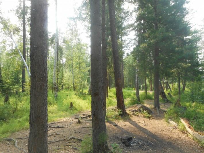 На Олхинском плато в предгорьях Саян