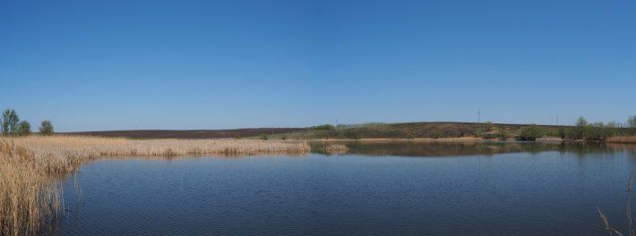 Пруд. Воронеж.